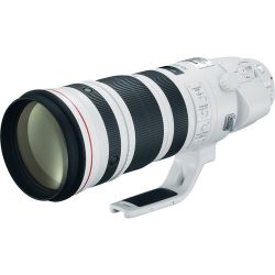 Lente Canon 200-400mm f/4.0L IS USM | TC 1,4X Interno
